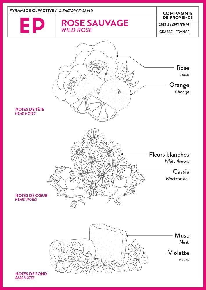 Geurpyramide Wild Rose - Rose Sauvage van Compagnie de Provence