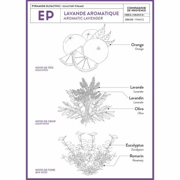 Geurbeschrijving Aromatic Lavender - Lavande Aromatique Marseillezeep van Compagnie de Provence te koop bij SkinEssence