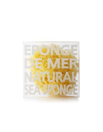 Zeespons - Natuurspons - Oceaanspons - Compagnie de Provence